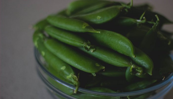 שעועית ירוקה, בצל שום ועשבים
